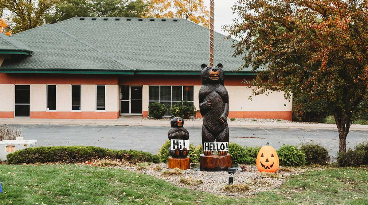 Buffalo Dental Bears